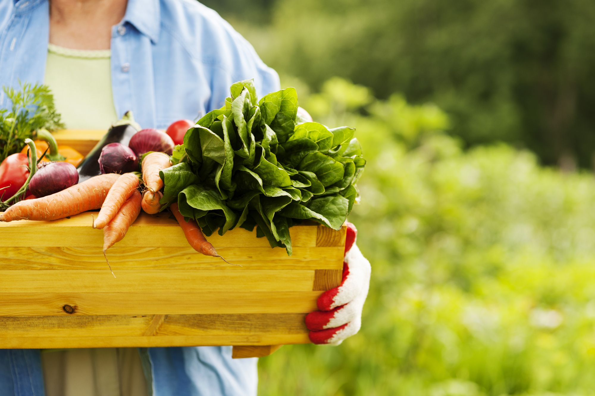 Eating from Your Own Garden